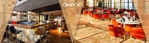 onyx-slide8